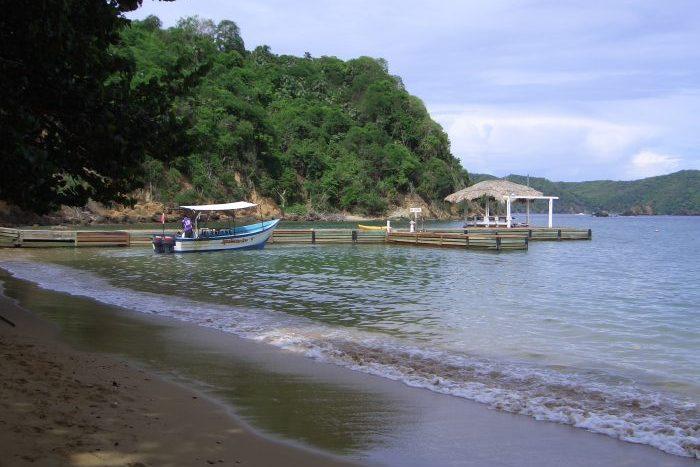 Tobago - MotMot Travel