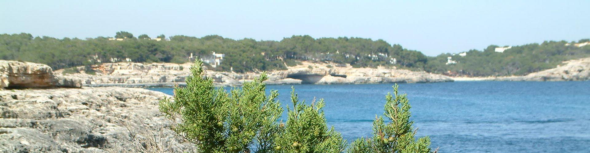 Mallorca-Chris-Donnelly