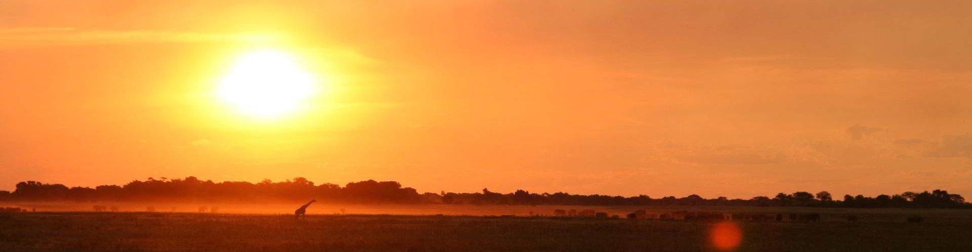 Chobe-Botswana
