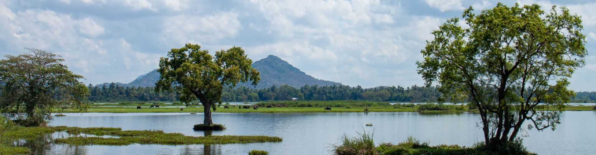 Tissa-Lake-Sri-Lanka