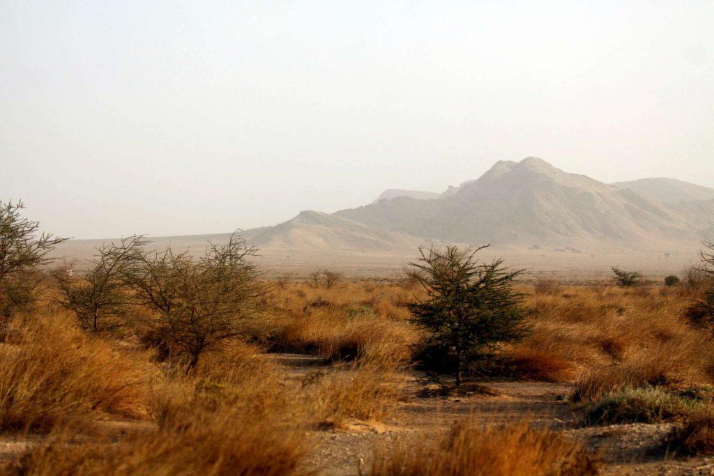 Oued-Jenna-Western-Sahara